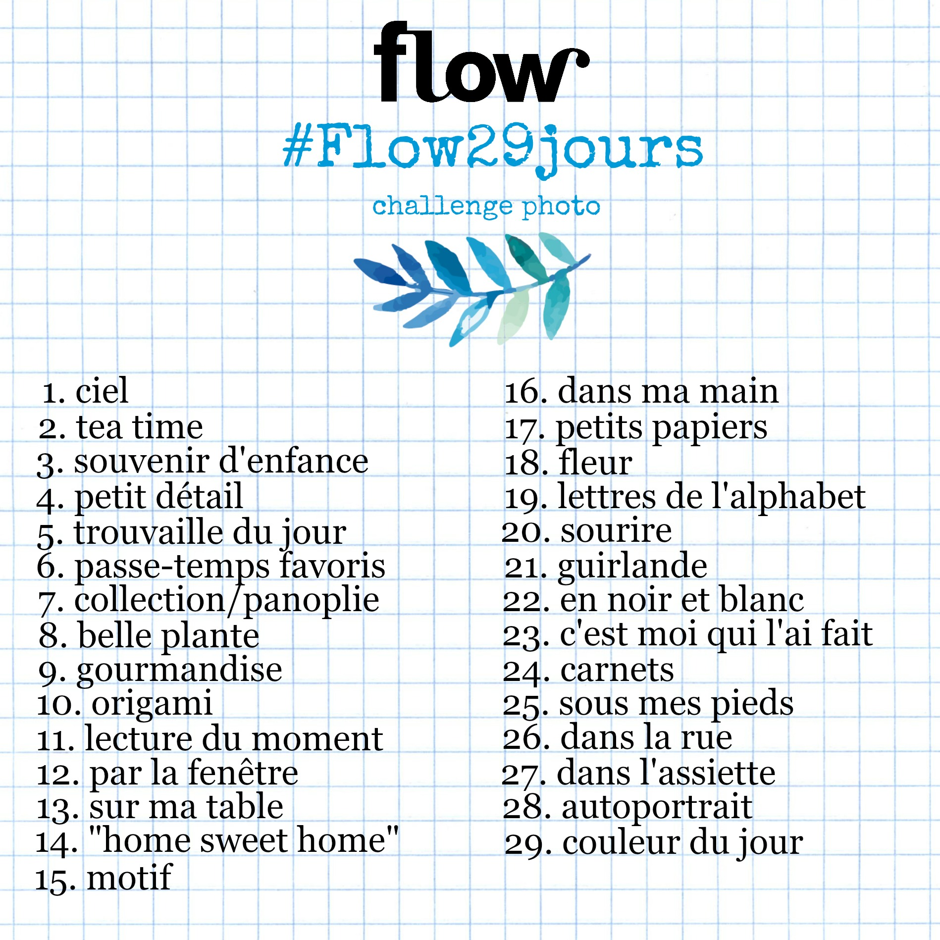 flow 29 jours challenge photo